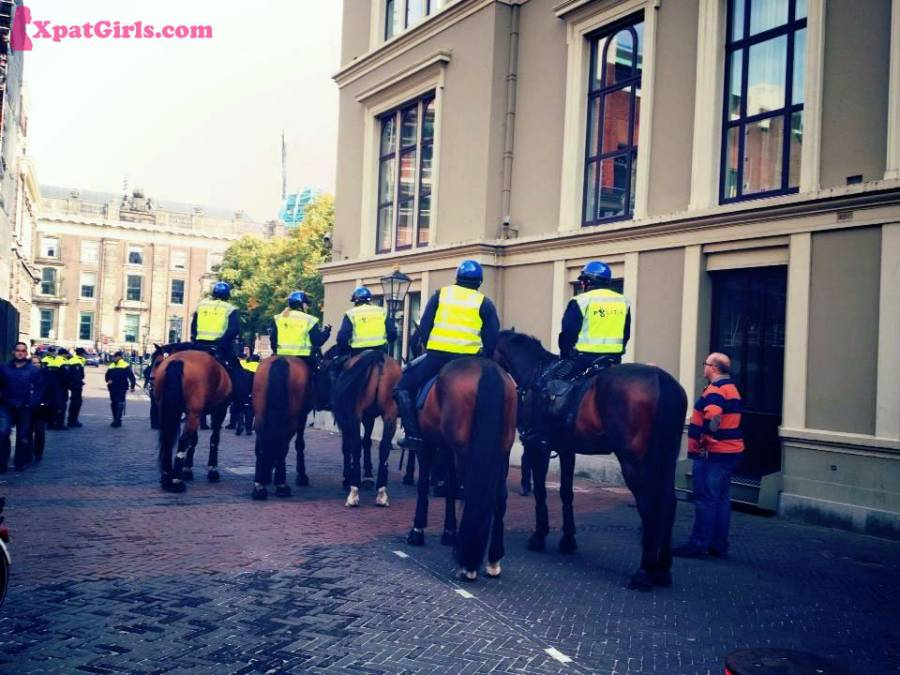"""Mounted police is very popular in The Hague"""
