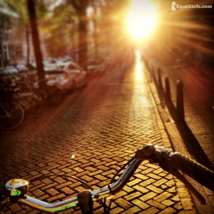 Biking the yellow brick road or the beautiful canals of Amsterdam on a sunny day