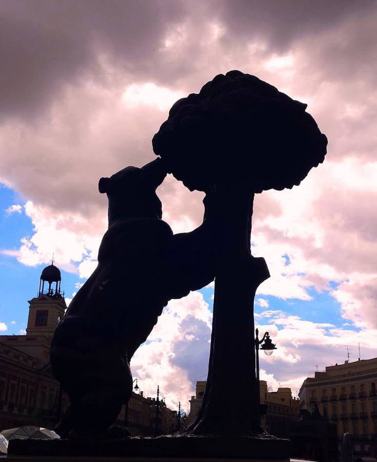 The bear and the Madroño tree or DE MADRID AL CIELO