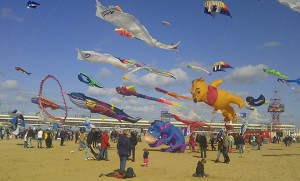 Annual kite show by the sea in The Hague