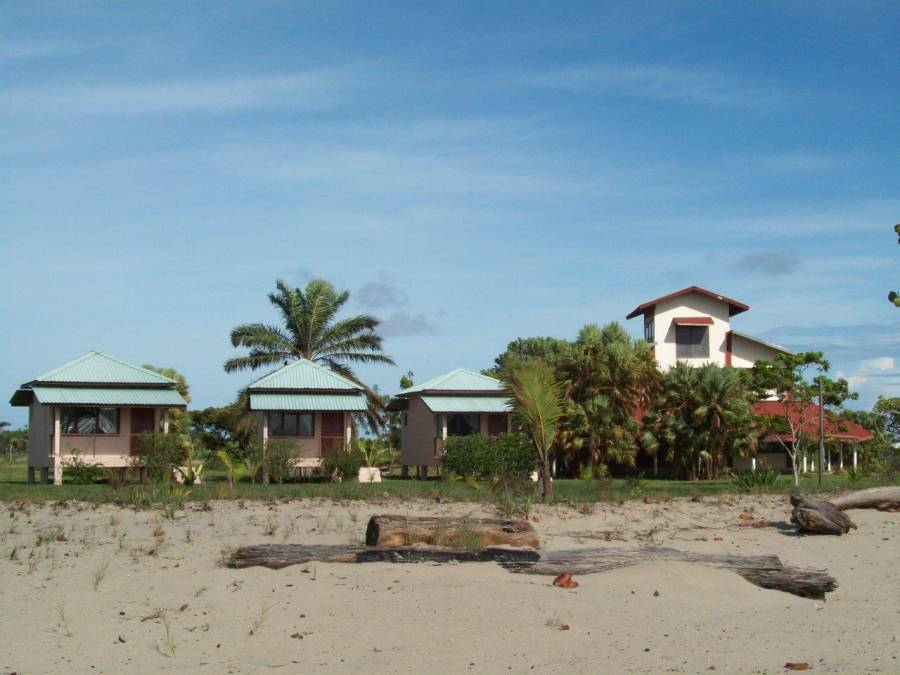This is where I lived in a shed and had to chase away cows on a daily basis while working in this hostel on the beach