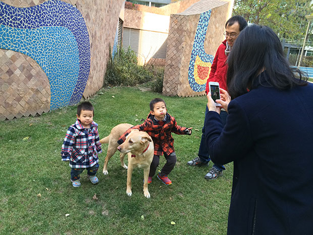 Already Chinese families posing with her to take a photo, just like a real Expat 